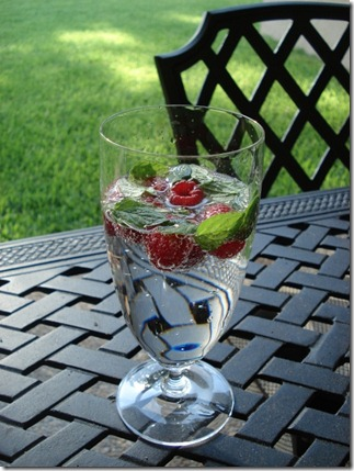 Post image for Cool Off With Red Raspberry Fizz