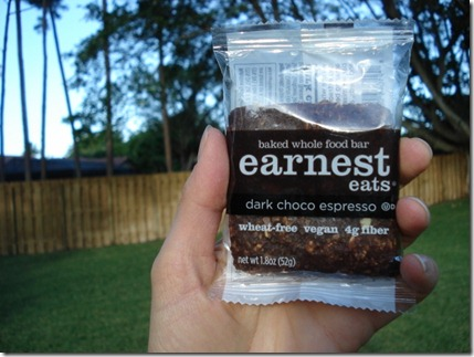 Earnest Eats Bar1(640x480)